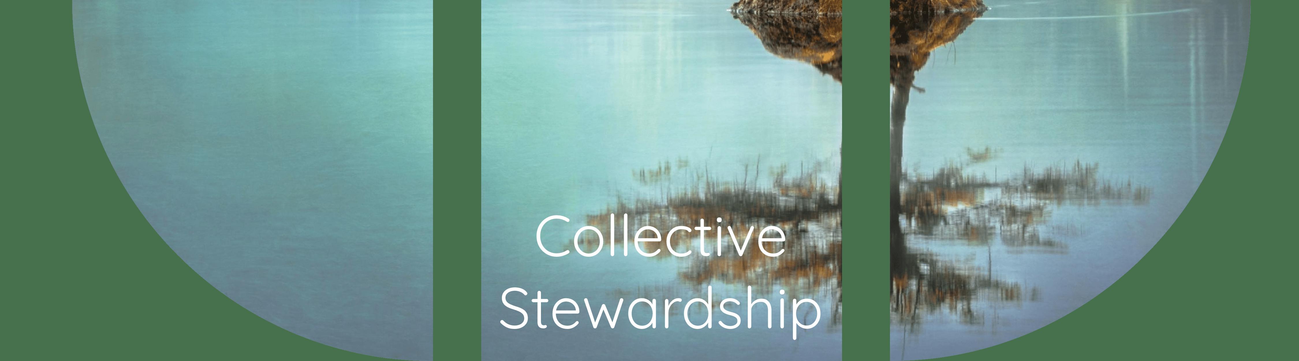 collective stewardship
